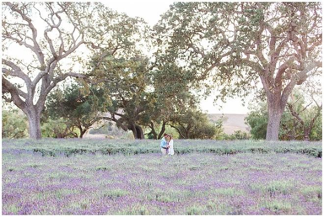 Lavender Engagement Los Angeles